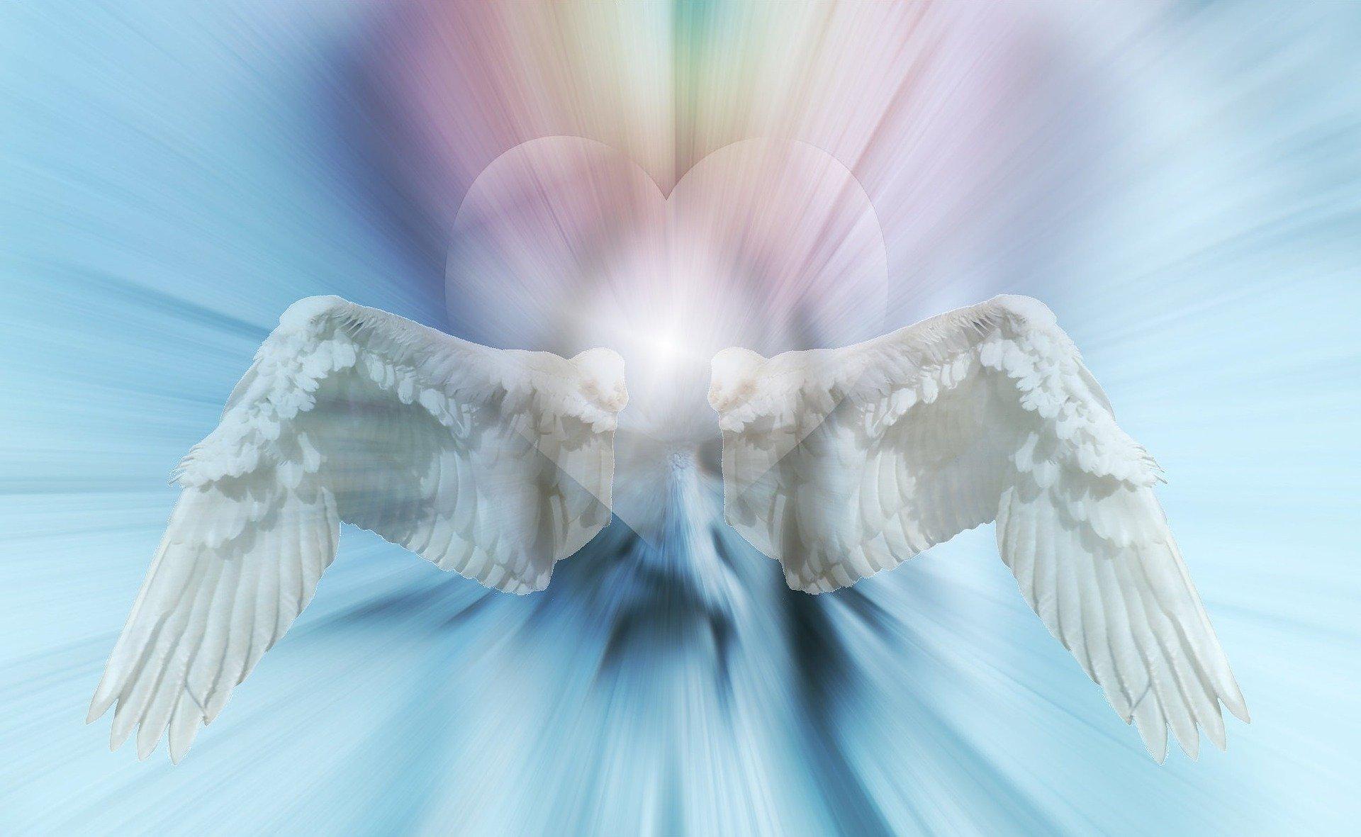 consejos-angelges